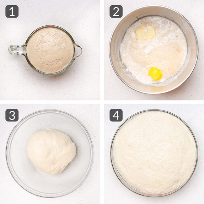 step photos for making homemade hamburger buns