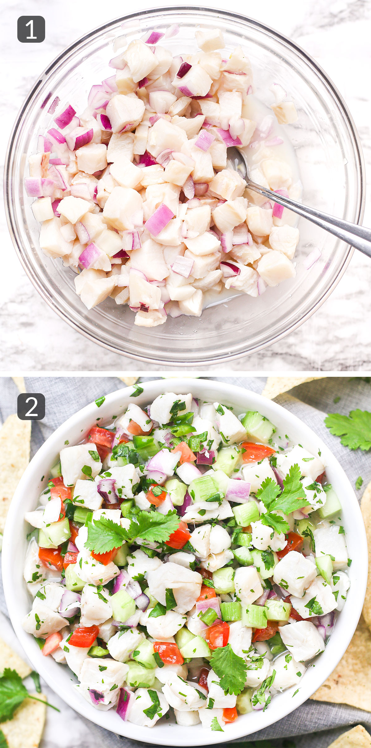 step photos showing how to make ceviche with fish
